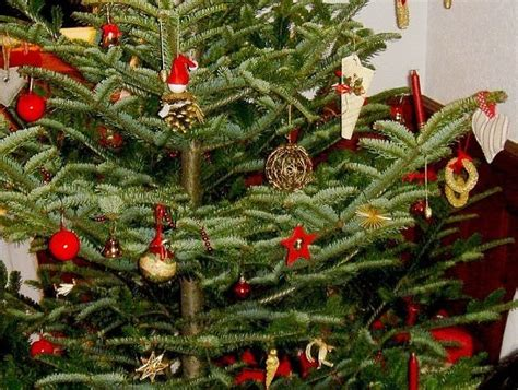 swiss christmas tree la suisse switzerland my heritage