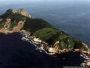 Brazil's 'Snake Island' Is The Place Of Nightmares, We're ...