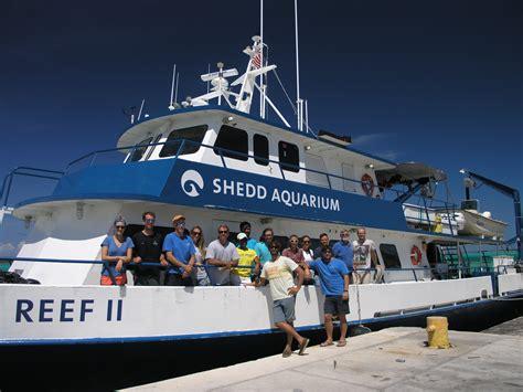 grouper nassau fish risk timm credit michael kristine stump