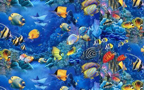Fish Background Fish Wallpaper Desktop Windows 10731 Wallpaper