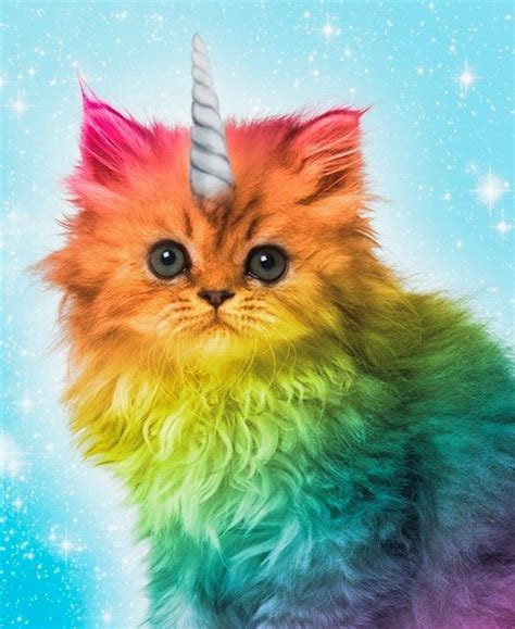 17 best images about unicorns unicorn on