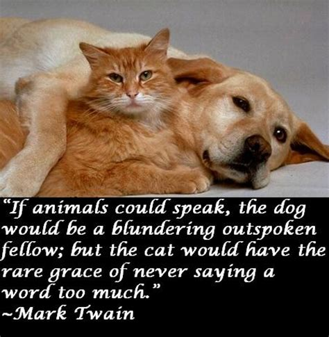 cats twain mark dogs quotes cat dog quote than better awesome myawesomequotes why animals could pets kitty speak kittens litter