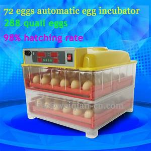 High Hatching Rate Automatic Quail Egg Incubator For Sale