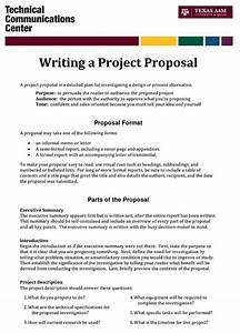 Write Proposal Example Noise Pollution Essay Write Proposal Samples