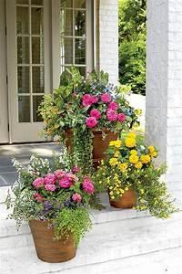 Front, Door, Planter, Ideas, 36, Plants, For, Front, Door, Entrance