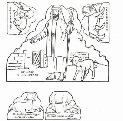 Psalm Bible Crafts Herder Psalms Sunday Goede