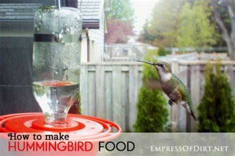 top 25 best make hummingbird food ideas on pinterest