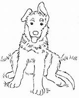Shepherd German Coloring Version Printable Samanthasbell Via sketch template