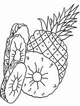 Pineapple Coloring Pages Printable Fruits Fruit Recommended Mycoloring sketch template