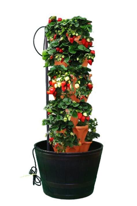 Best Item Mr Stacky Stacking Hydroponic Pots Tower The