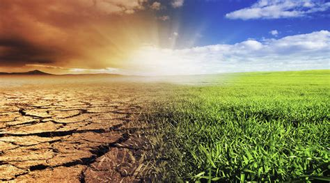 environment  climate change european institute