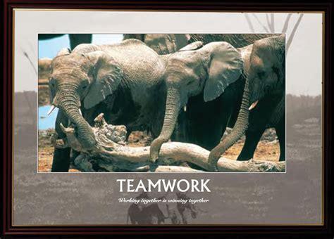 motivational posters wildlife inspirit world
