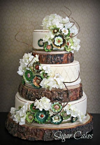 18 Rustic Wood Tree Slice Wedding Cake Base Or Cupcake
