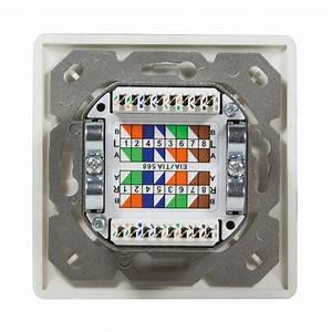Cat 6a Dose : cat6 netzwerkdose netzwerk dose kombidose aufputz unterputz gigabit lan 2x rj45 ebay ~ Buech-reservation.com Haus und Dekorationen