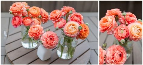 los angeles flower market wedding flower resource