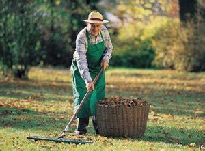 hinzuverdienstgrenzen bei altersrenten sozialwesen haufe