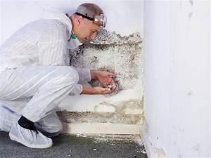 Modriger Geruch Entfernen : was macht ein schimmelgutachter schimmelprotektor ~ Frokenaadalensverden.com Haus und Dekorationen