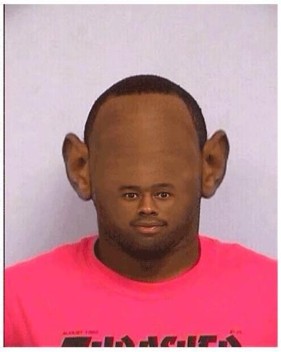 Tyler Creator Mugshot Meme Funny Memes Forehead