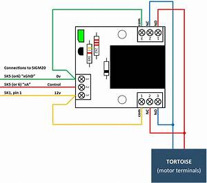 Tortoise Point Motor Wiring Diagram