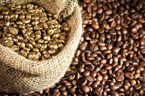 Wholesale coffee seeds ☆ find 428 coffee seeds products from 181 manufacturers & suppliers at ec21. Golden Coffee Seeds On Burlap Sack Stock Photo - Image: 19121640