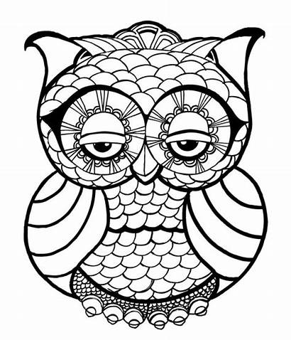 Coloring Owl Pages Adults Detailed