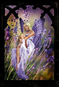 Lavender Flower Fairies