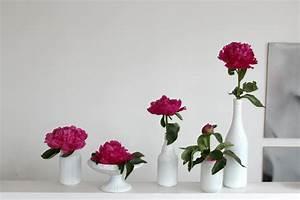 Pfingstrosen In Der Vase : wunderbare farbe danke an die pfingstrosen neuer stoff ~ Buech-reservation.com Haus und Dekorationen