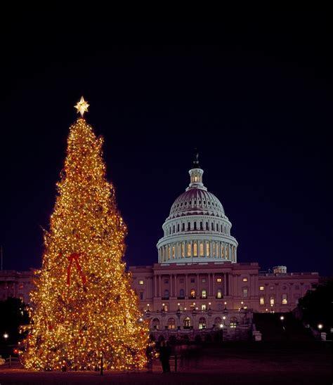 sacramento capital christmas decorations free photo tree capitol building free image on pixabay 1076102