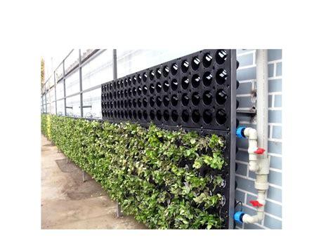 Best Vertical Garden System by Green Wall System Cfi Wp01 The Green Wall Green Wall