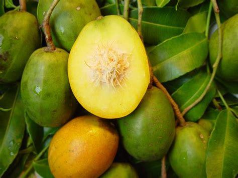 lychee fruit inside golden caribbean fruits grenada bluewater sailing