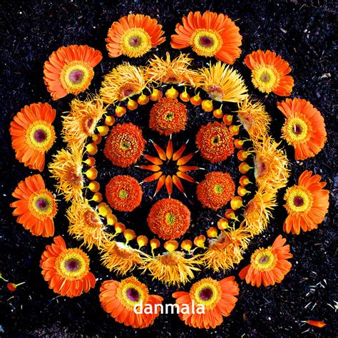 mandala klein as mandalas de flores de kathy klein kathy klein s flower mandalas felipe mind