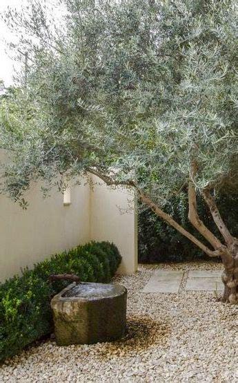 olive garden jackson ms olive tree gravel garden of author eudora welty in jackson