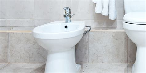 What Is Bidet by What Are Bidets And Bidet Toilet Seats Brondell