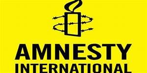 Amnesty International criticizes US-led coalition ...