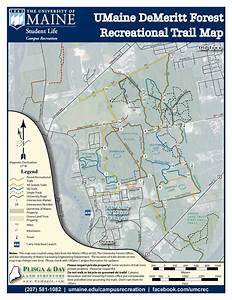 Demeritt Forest Trail System - Campus Recreation