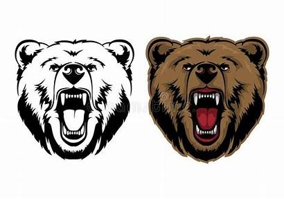 Bear Grizzly Mascot Head Vector Graphic Illustration