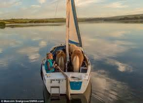 Horses On A Boat by Trainer Takes Shetland Ponies Aboard A Tiny Boat