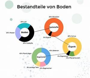Balkenschuh Für Boden : boden humus ist unverzichtbar f r die welt autarkieblog ~ Articles-book.com Haus und Dekorationen