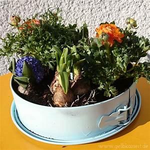 Was Sind Frühlingsblumen : upcycling fr hlingsblumen in einer alten springform handmade kultur ~ Whattoseeinmadrid.com Haus und Dekorationen