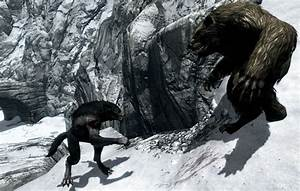 Werewolf vs Werebear | Werebeasts | Pinterest | Werewolves ...