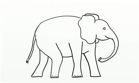 elephant template printable elephant template animal templates free premium templates