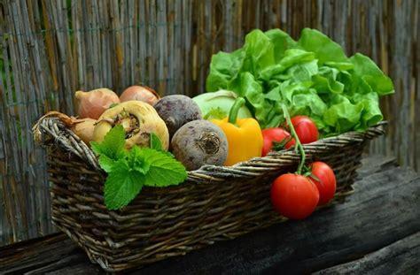 Gemüsebeet & Gemüsegarten Anlegen  Anleitung Für Anfänger
