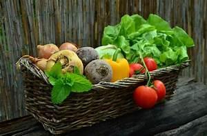 Gemüsegarten Anlegen Für Anfänger : gem sebeet gem segarten anlegen anleitung f r anf nger ~ Whattoseeinmadrid.com Haus und Dekorationen