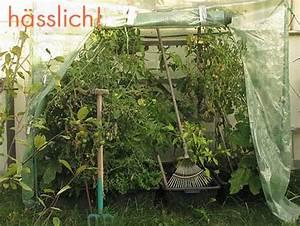 Tomatenzelt Selber Bauen : gesucht das optimale tomatendach das wilde gartenblog ~ Eleganceandgraceweddings.com Haus und Dekorationen