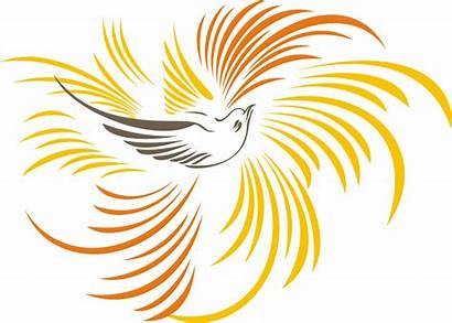 Cendrawasih Burung Gambar Vektor Papua Clipart Kumpulan