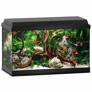 Aquarium Set Led : great bargains on aquarium sets and start up aquariums ~ Watch28wear.com Haus und Dekorationen