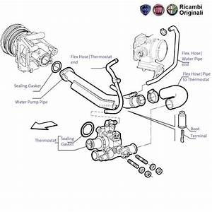 Fiat Palio 1 6  Thermostat  U0026 Water Pump Pipes