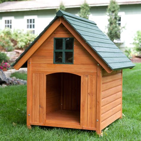 dog house dogs  people