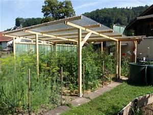 Abri A Tomate : tomates 2010 de craonne le suivi de vos semis 2010 ~ Premium-room.com Idées de Décoration