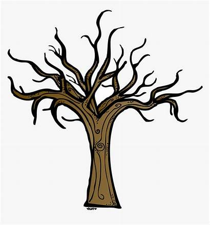 Tree Trunk Clipart Bare Transparent Kindpng